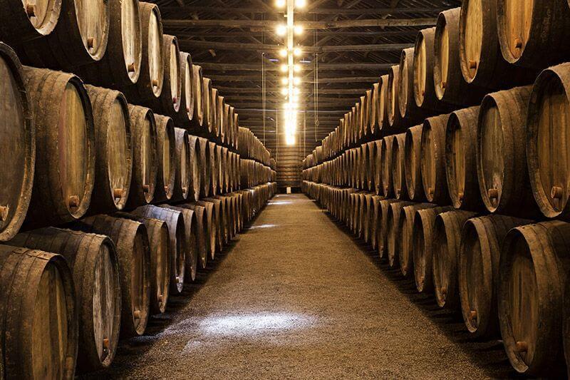 Ruta del vino Campo de Cariñena, a 30 km del Hotel 26 Labrador